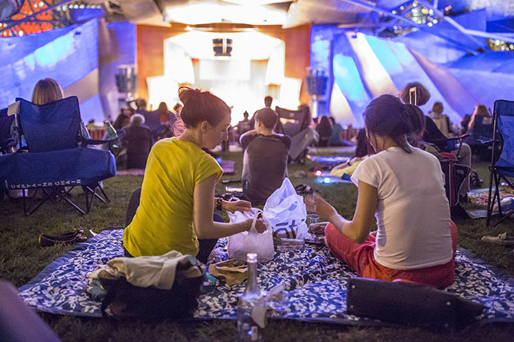 Stars of Lyric Opera at Millennium Park - Opera concert audience members enjoy a picnic on the lawn of the Jay Pritzker Pavilion in Chicago.